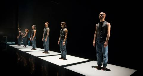 6 dancers in a row each standing on a white square