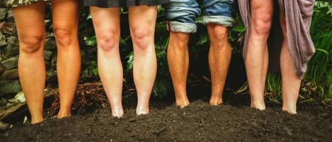 4 pairs of feet standing in soil